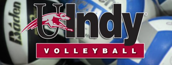 Volleyball – Youth Camp